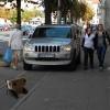 robot trotuar jeep meltean